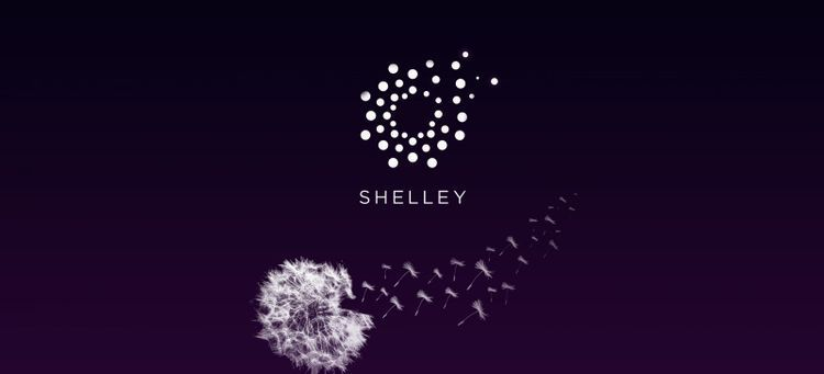 How will Shelley impact Cardano's price in 2020?