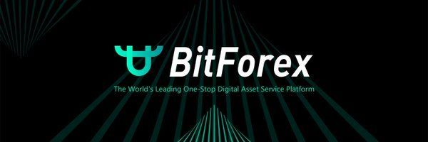 BitForex review cover image