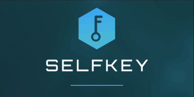 Understanding SelfKey: a beginner's guide and review