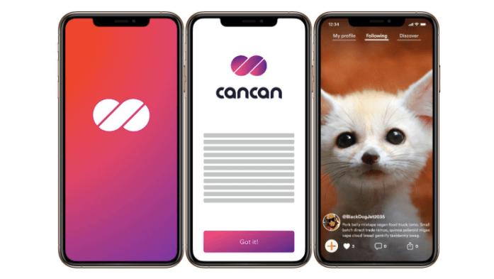 "screenshot of ""CanCan"" demo"