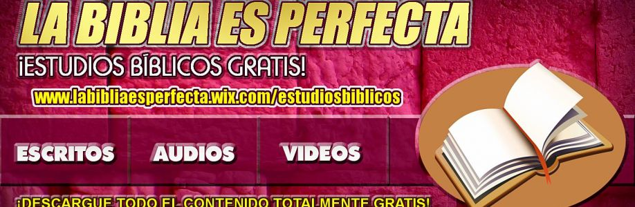 La Biblia Es Perfecta Cover Image