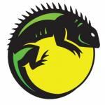 iguanarchist