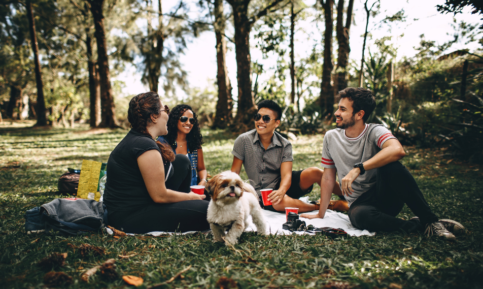 6 Benefits of Socialising and Companionship