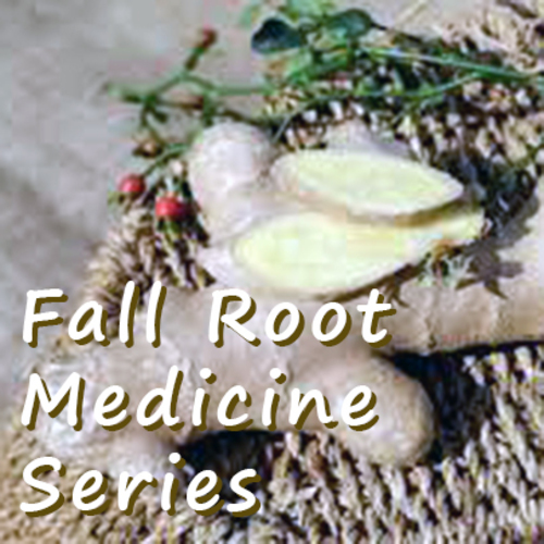 Fall Root Medicine Series: Digging Deeper into Winter Health at Prairiewoods