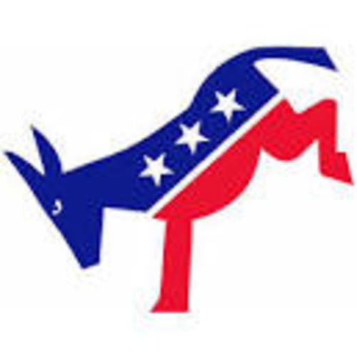 Democratic Caucus Orientation / Mock Caucus