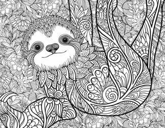 Search sloth