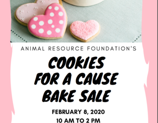 Search 2020.01.21 cookiesforacause