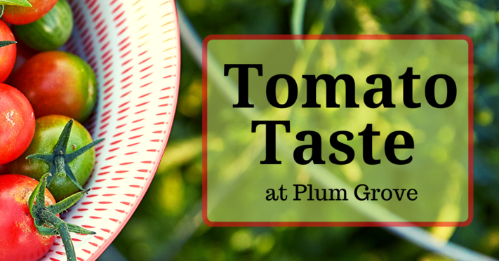 Tomato Taste at Plum Grove