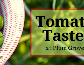 Search tomato taste fb event