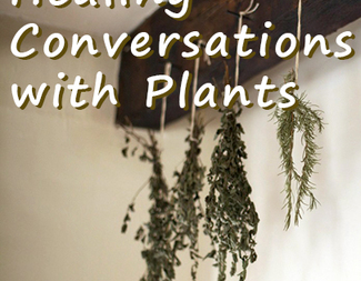 Search healing conversations with plants