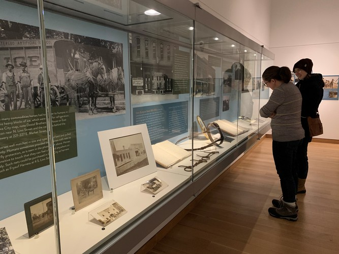 Curator Guided Tour: 'The Pull of Horses on National and Local Histories and Identities'