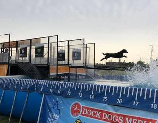 Jump for Freedom - Dock Dogs