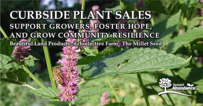 Curbside Plant Sales