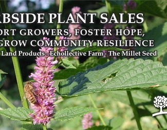 Search 2020 curbsideplantsales facebookad