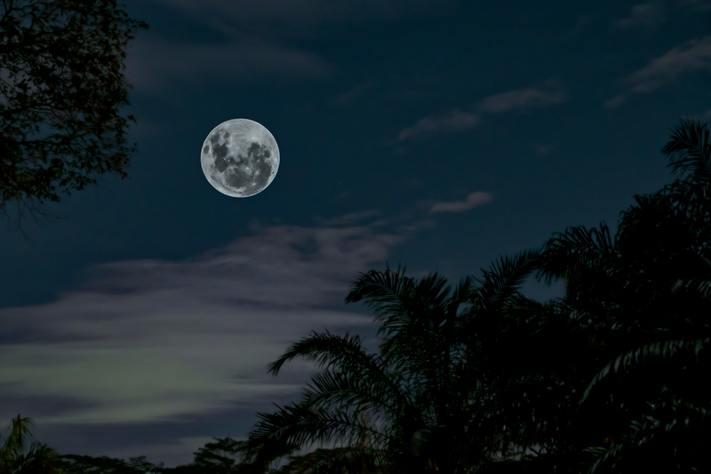 EVENT FULL: Moonlight Hike at Pinicon Ridge Park