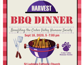 Search harvest bbq 2020 graphic for website