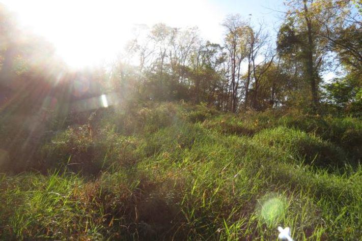 EVENT FULL: Wilderness Skills Day