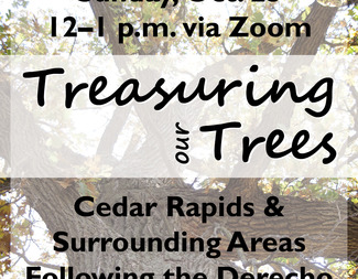 Search 2020 10 25 treasuring our trees logo
