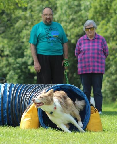 Dogs4Dystonia Dog Walk--Hope On A Leash