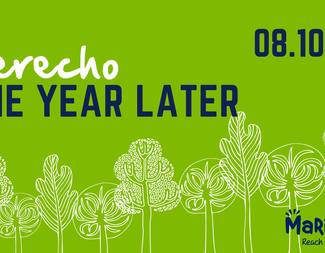 Search derech one year later