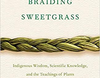 Search braiding sweetgrass
