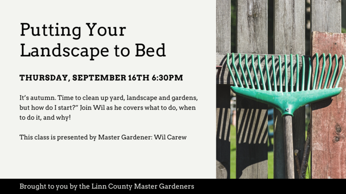 Putting Your Landscape to Bed