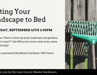 Search putting your landscape to bed