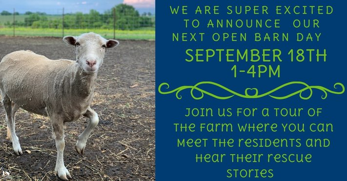 Open Barn Day
