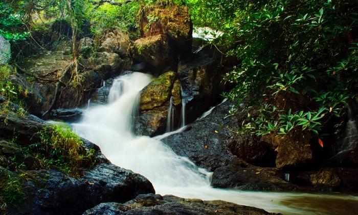อุทยานแห่งชาติเขาใหญ่ & ทัวร์เดินป่าส่วนตัว (ออกเดินทางจากกรุงเทพ)