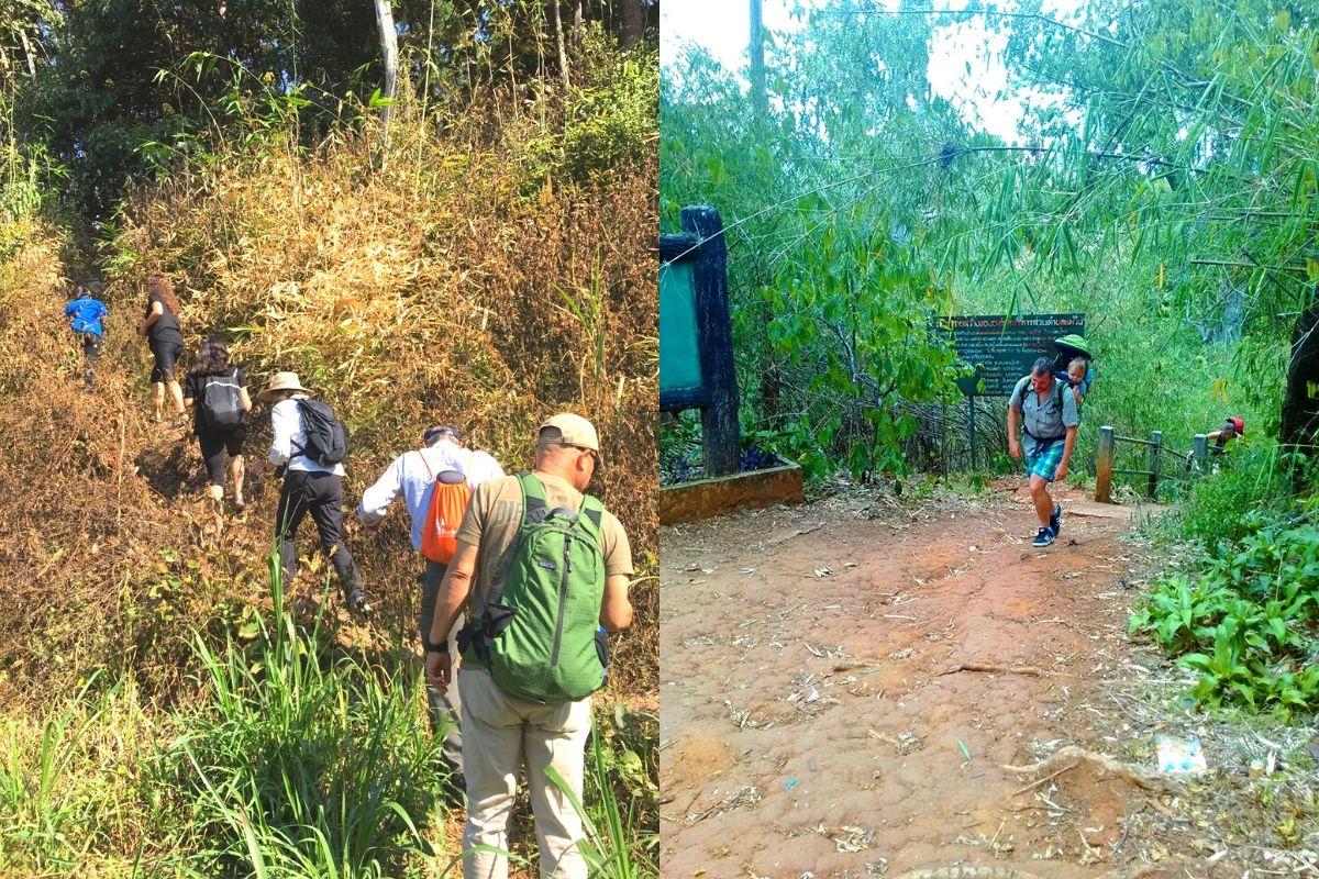 Trek Tour One Day in Mae Wang - Sanpatong (Private Tour)