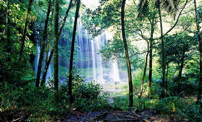 ทัวร์ชมน้ำตกป่าละอู