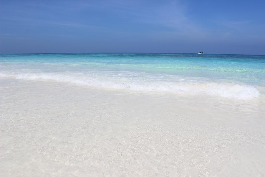 Tachai Island by Speedboat
