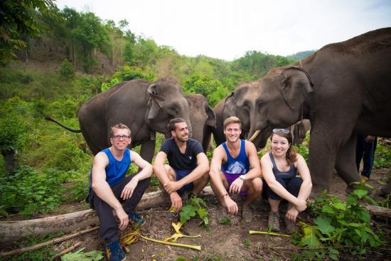 ทัวร์ปางช้าง Kerchor Elephant Eco Park เชียงใหม่