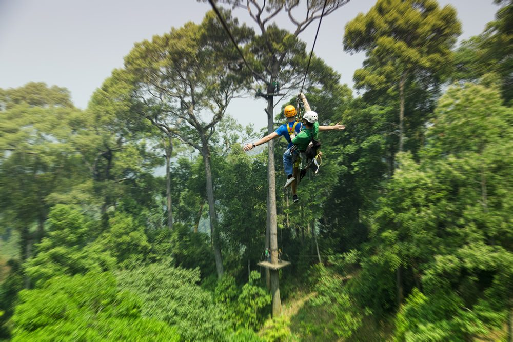 Jungle Flight Chiangmai