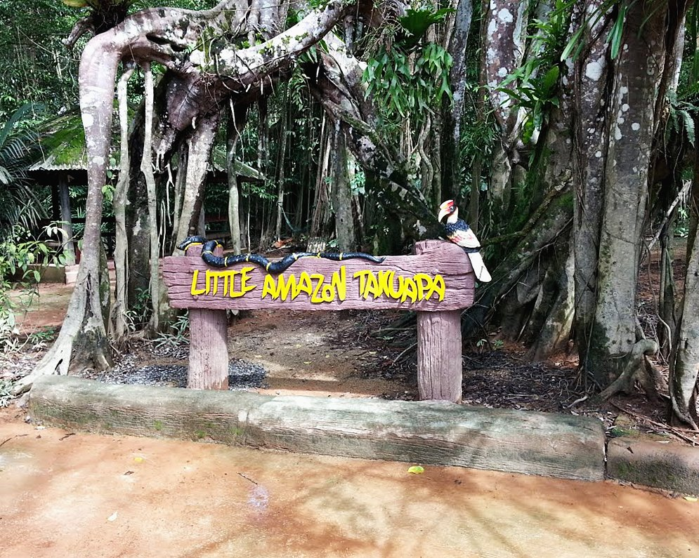 The Lost Zone Amazon & Old Town in Takuapa