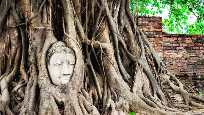 Ayutthaya Highlights Cycling Tour and Rice Barge Cruise