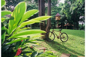 Pasak Hillside Resort Lopburi