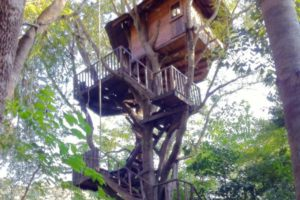 Rabeang Pasak Tree House Resort Chiang Mai