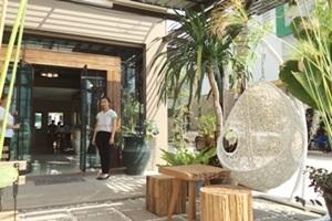 Tree Retro Tasala Chiang Mai
