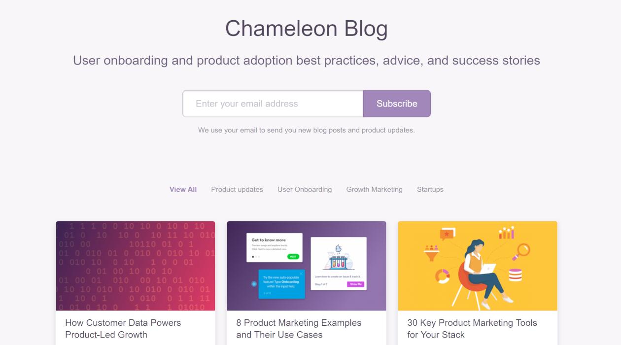 Chameleon Blog newsletter image