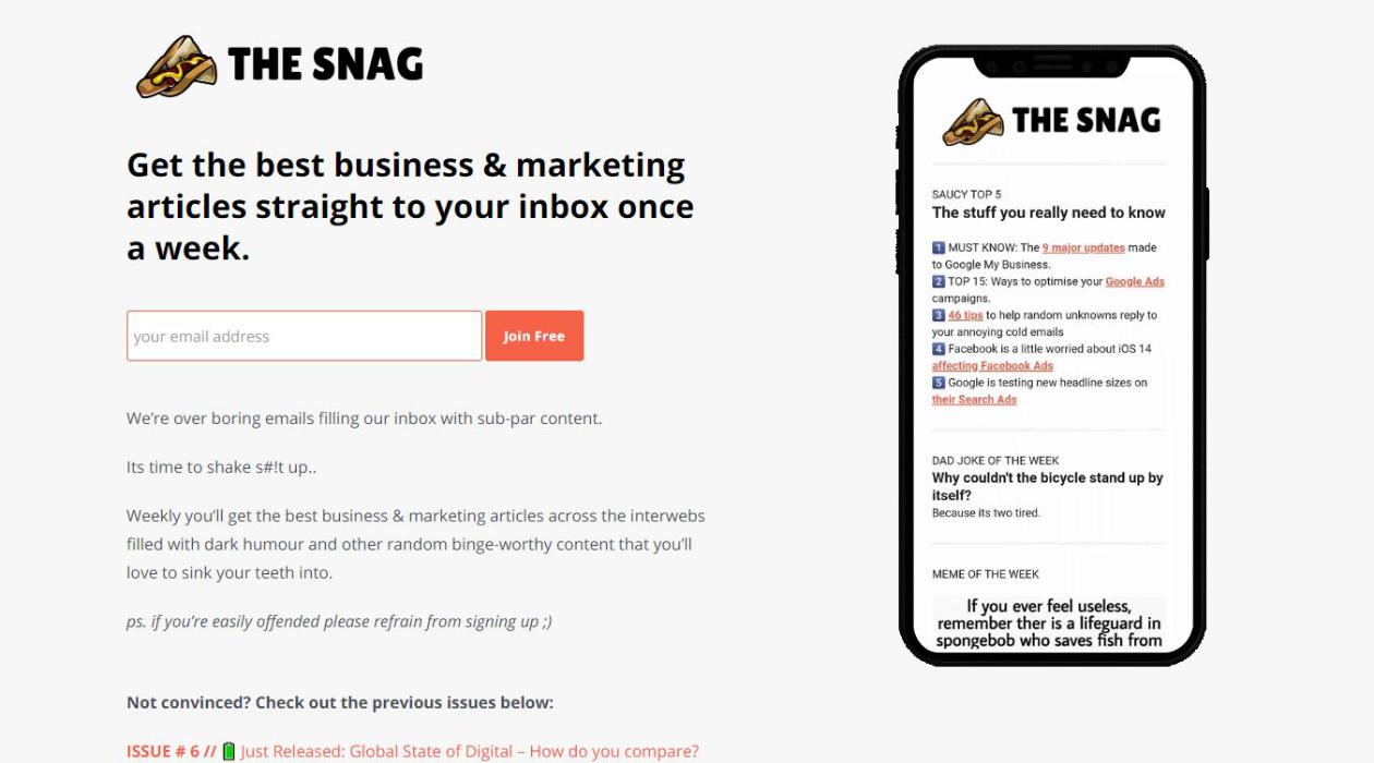 The Snag newsletter image