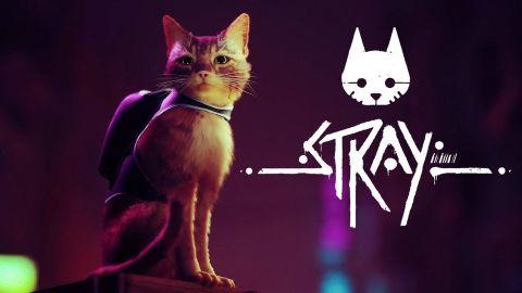 Adventura Stray se ukázala v gameplay záběrech. Zatoulaná kočka přicupitá až příští rok