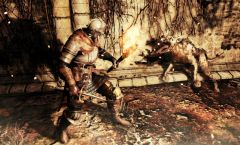 Dark Souls 2 sběratelka ve videu
