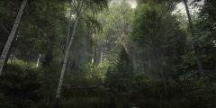 Výrazně modifikovaná beta Kingdom Come: Deliverance vypadá fantasticky