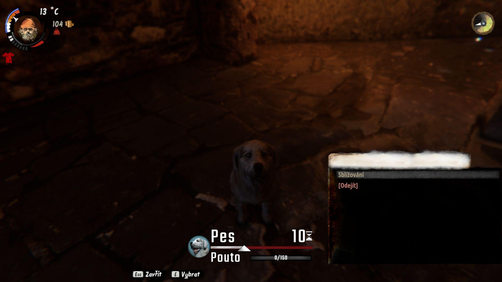 Pes je poměrně drahá záležitost, ale nechávat jej jeho předchozímu majiteli? To raději ne...
