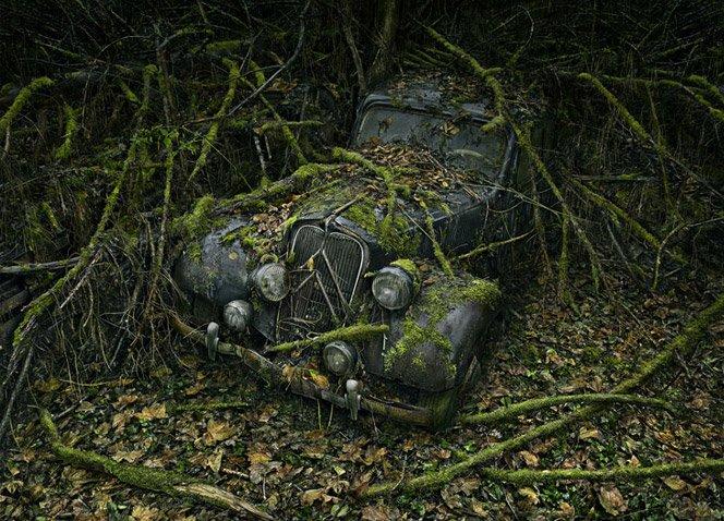 Fotógrafo registra carros abandonados em florestas