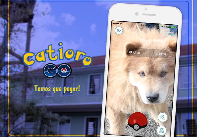 Catioro Go: cidade gaúcha convida  pessoas a 'pegar' cães enquanto não podem pegar Pokémons