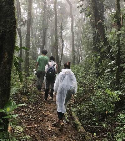 Megatrilha de 3 mil km vai conectar Rio de Janeiro ao Rio Grande do Sul pela mata atlântica