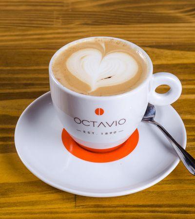 No Dia Nacional do Café, conheça cada passo de sua produção, da semente à xícara