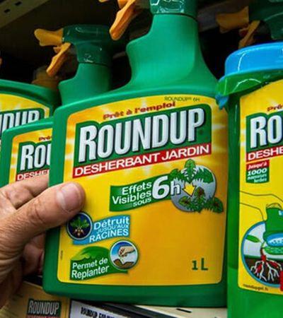 Monsanto é condenada a pagar indenização bilionária para jardineiro com câncer terminal
